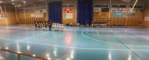 Consell-Pla 16-12