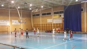 Consell-manacor inf